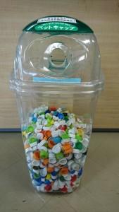 ペットボトルキャップ収集箱の写真